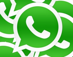 1. Keep them in the loop with WhatsApp