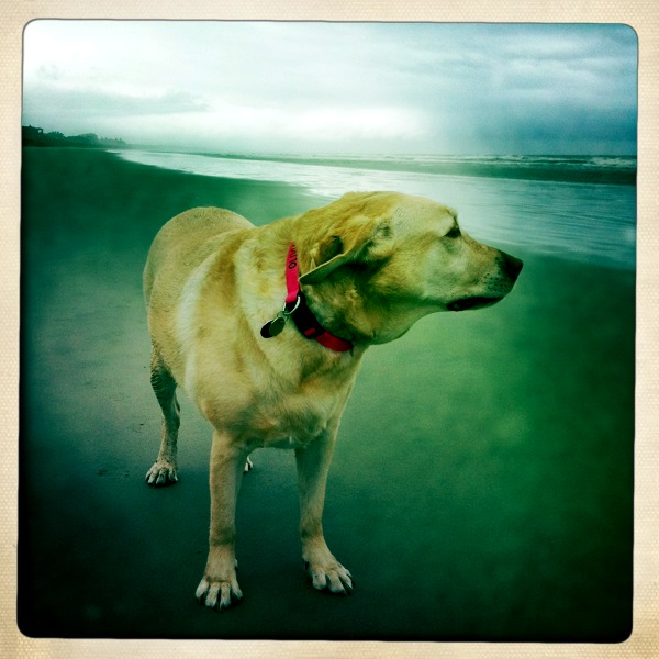 Olivia with Hipstamatic