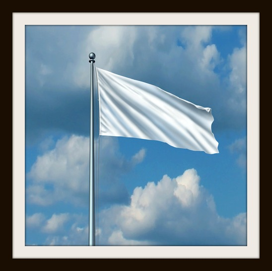 photodune-6743514-white-flag-xs